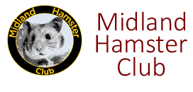 Breeding Syrian Hamsters – Midland Hamster Club